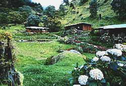 Trogon Lodge in San Gerardo de Dota